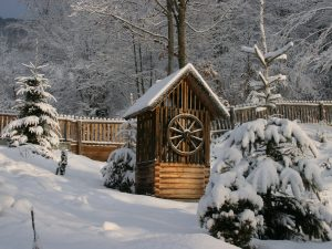 Pro zahradu je sníh hřejivou přikrývkou, ale pro větve dřevin může znamenat vysokou zátěž
